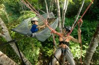 tropicaltreeclimbing's Avatar