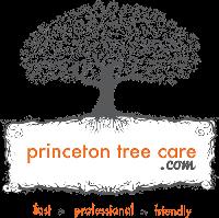 princetontreecare's Avatar
