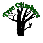 Tree Climbers Australia